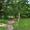 Продается летний дом на берегу р. Волги  #988352
