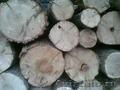 Дубовые,  березовые дрова