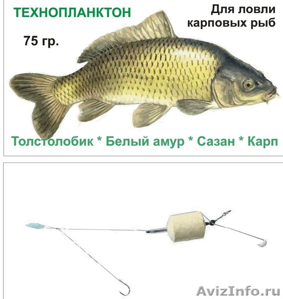 технопланктон в самаре
