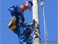 Обслуживание сетей электроснабжения.Проектирование.Электромонтаж. - Изображение #4, Объявление #612254