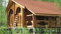 Срубовой дом на берегу Волги