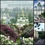 Групповые туры в Киев (в Украину)