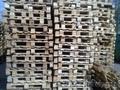 продаю поддон деревянный 1200*800 евро - Изображение #2, Объявление #693896