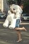 Большой Плюшевый мишка Веня по самой привлекательной цене, Объявление #1031841