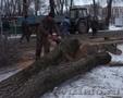 Колотые дрова дуб, берёза, осина, клен. - Изображение #4, Объявление #955896