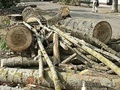Колотые дрова дуб, берёза, осина, клен. - Изображение #5, Объявление #955896