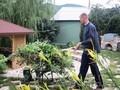 Сезонная чистка сада.+79277770575 Самара, Тольятти, Сызрань, Жигулевск - Изображение #2, Объявление #1538106